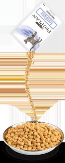 Fortiflora Kullanımı